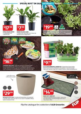 Aldi garden specials catalogue 2 8 mar 2016 for Aldi gardening tools 2016
